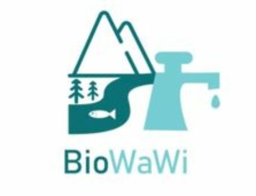 BioWaWi