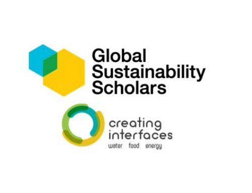 Successful Completion of the Global Sustainability Scholarship (GSS)